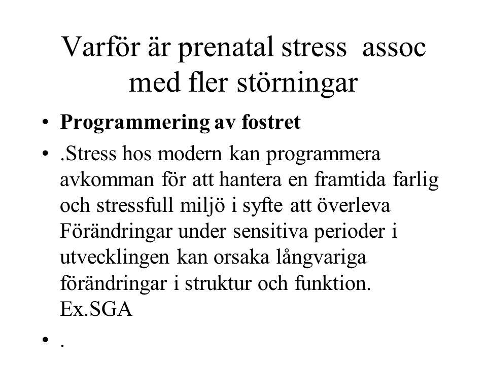 Varför är prenatal stress assoc med fler störningar