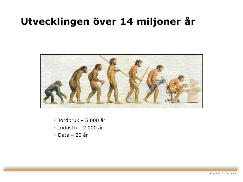Utvecklingen över 14 miljoner år