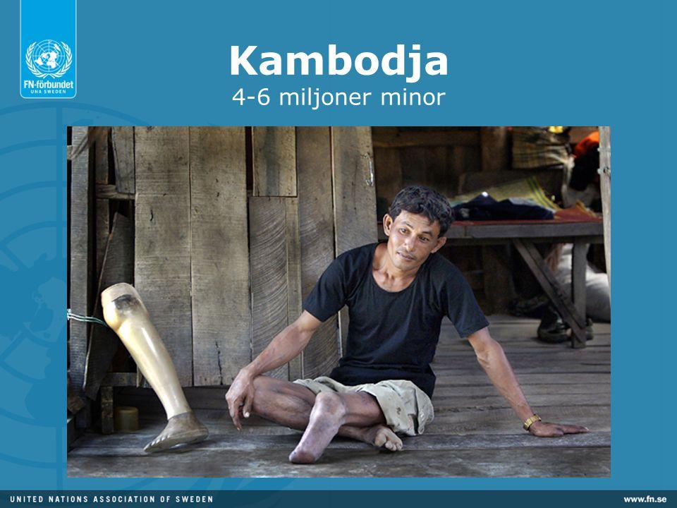 Kambodja 4-6 miljoner minor