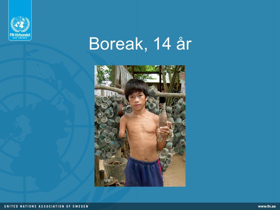 Boreak, 14 år
