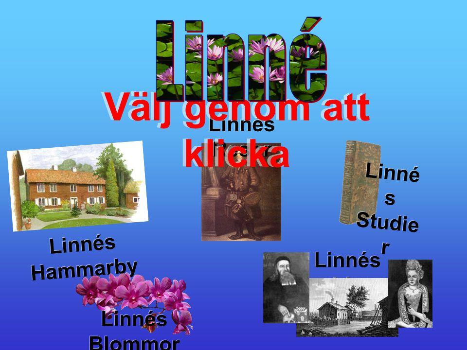 Välj genom att klicka Linné Linnés Resor Linnés Studier