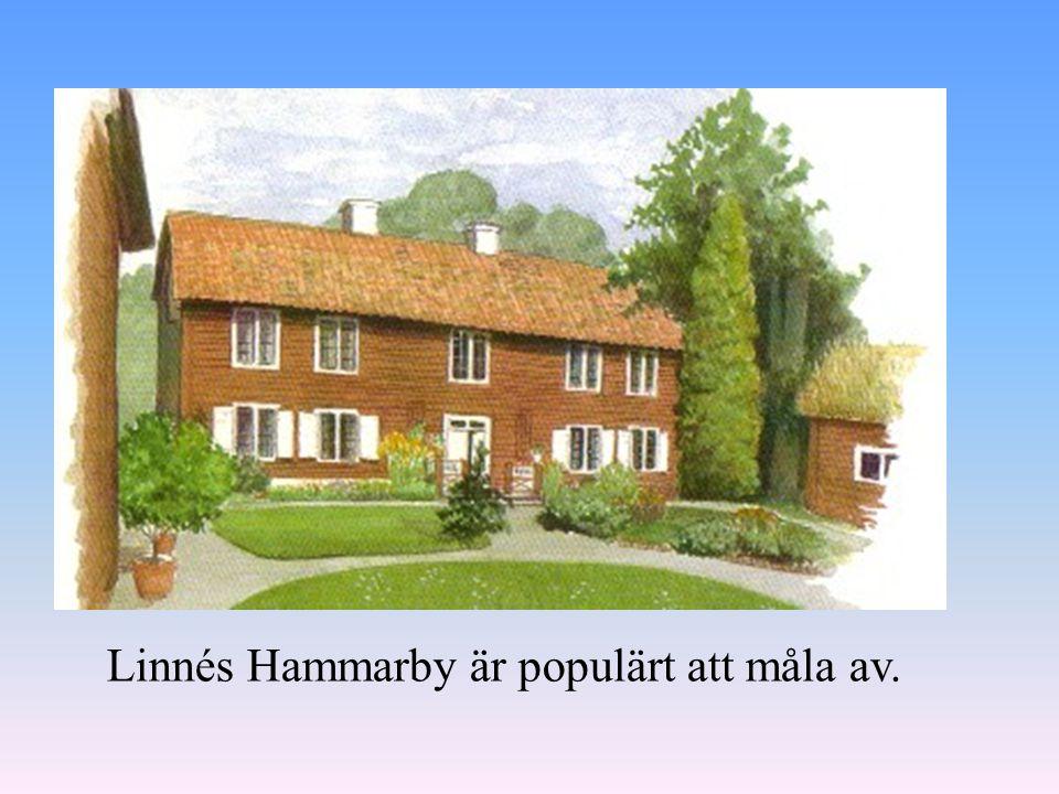 Linnés Hammarby är populärt att måla av.