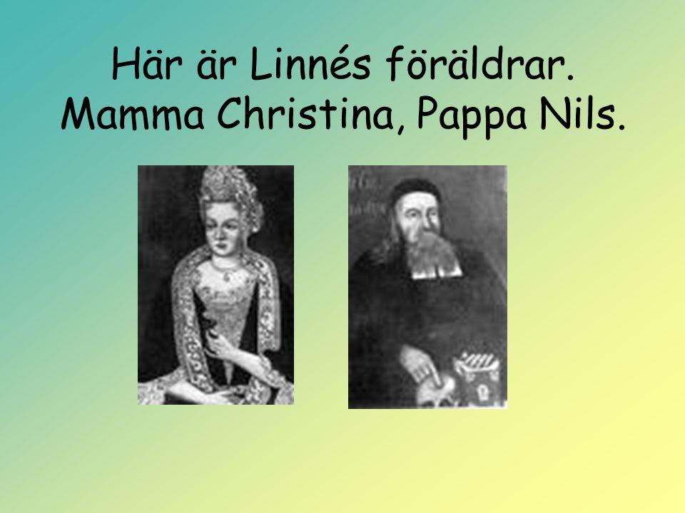 Här är Linnés föräldrar. Mamma Christina, Pappa Nils.