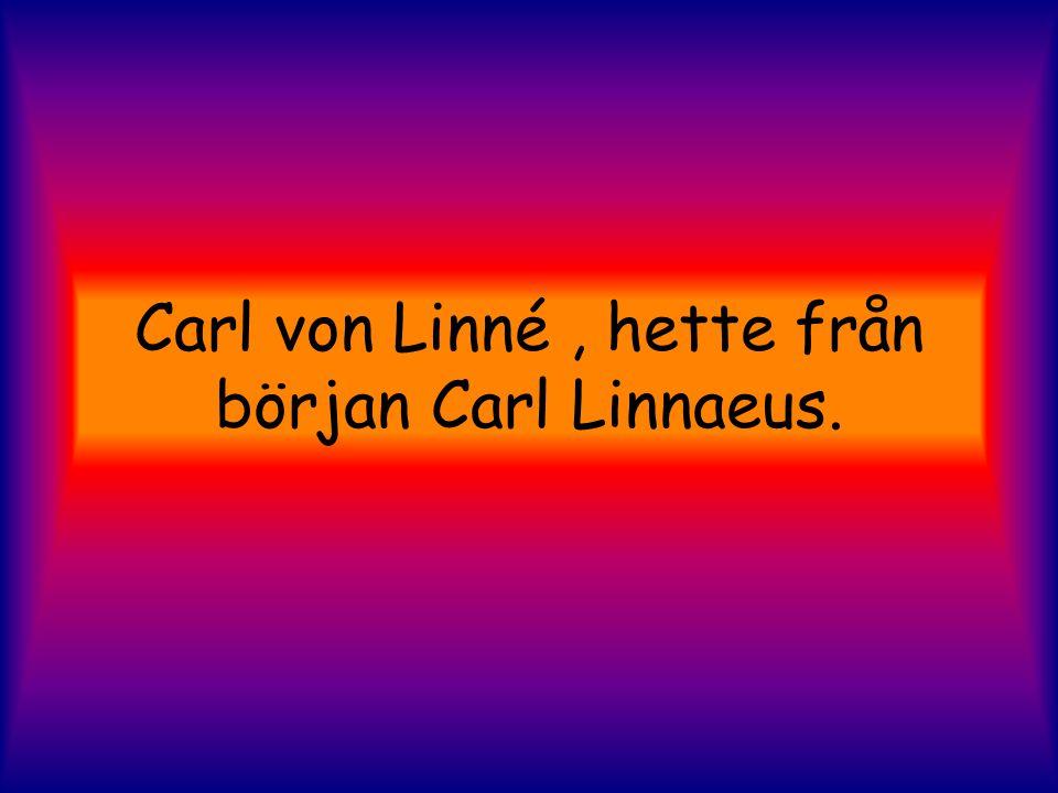 Carl von Linné , hette från början Carl Linnaeus.