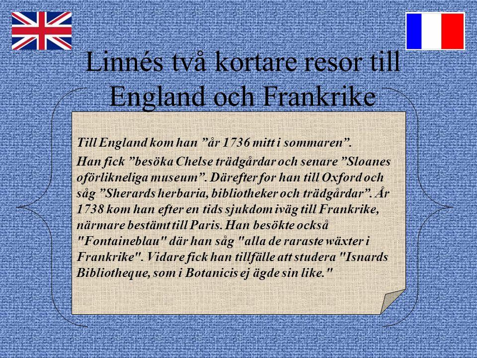 Linnés två kortare resor till England och Frankrike