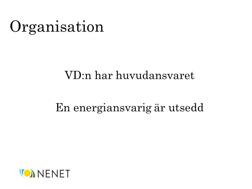 VD:n har huvudansvaret En energiansvarig är utsedd