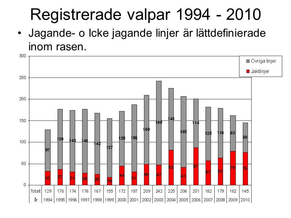Registrerade valpar 1994 - 2010 Jagande- o Icke jagande linjer är lättdefinierade inom rasen.