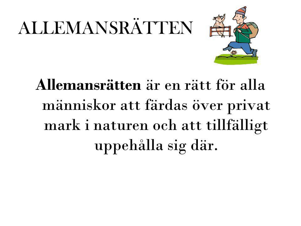 ALLEMANSRÄTTEN Allemansrätten är en rätt för alla människor att färdas över privat mark i naturen och att tillfälligt uppehålla sig där.
