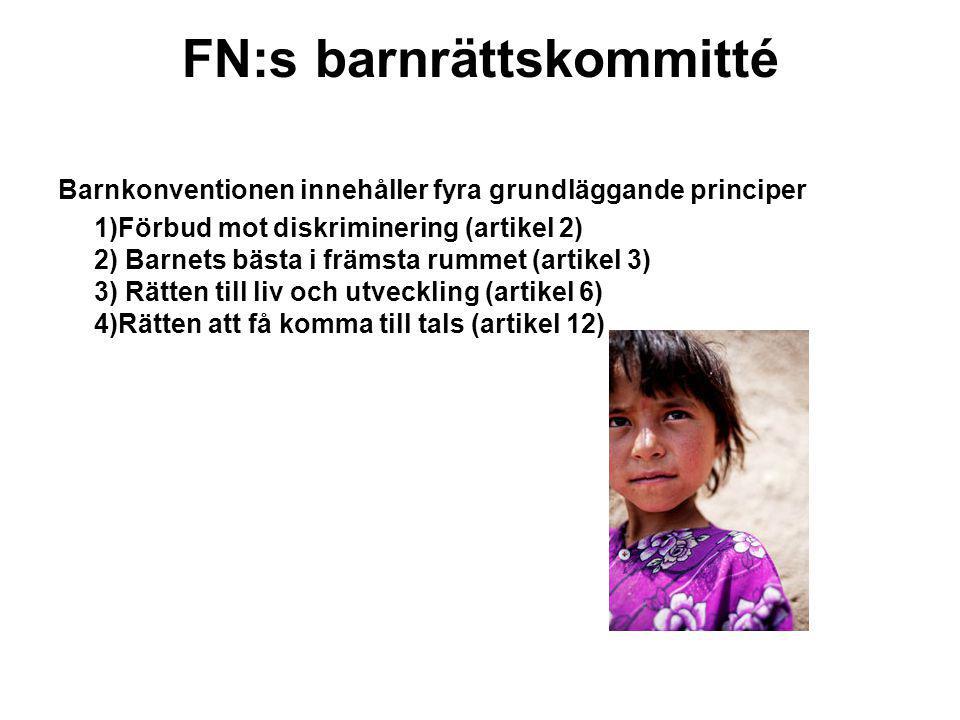 FN:s barnrättskommitté