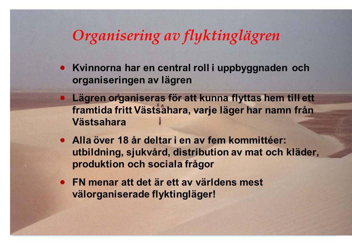 Organisering av flyktinglägren
