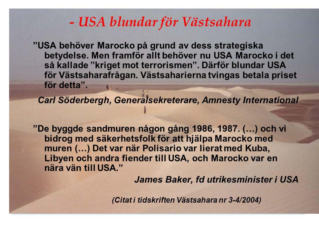 - USA blundar för Västsahara