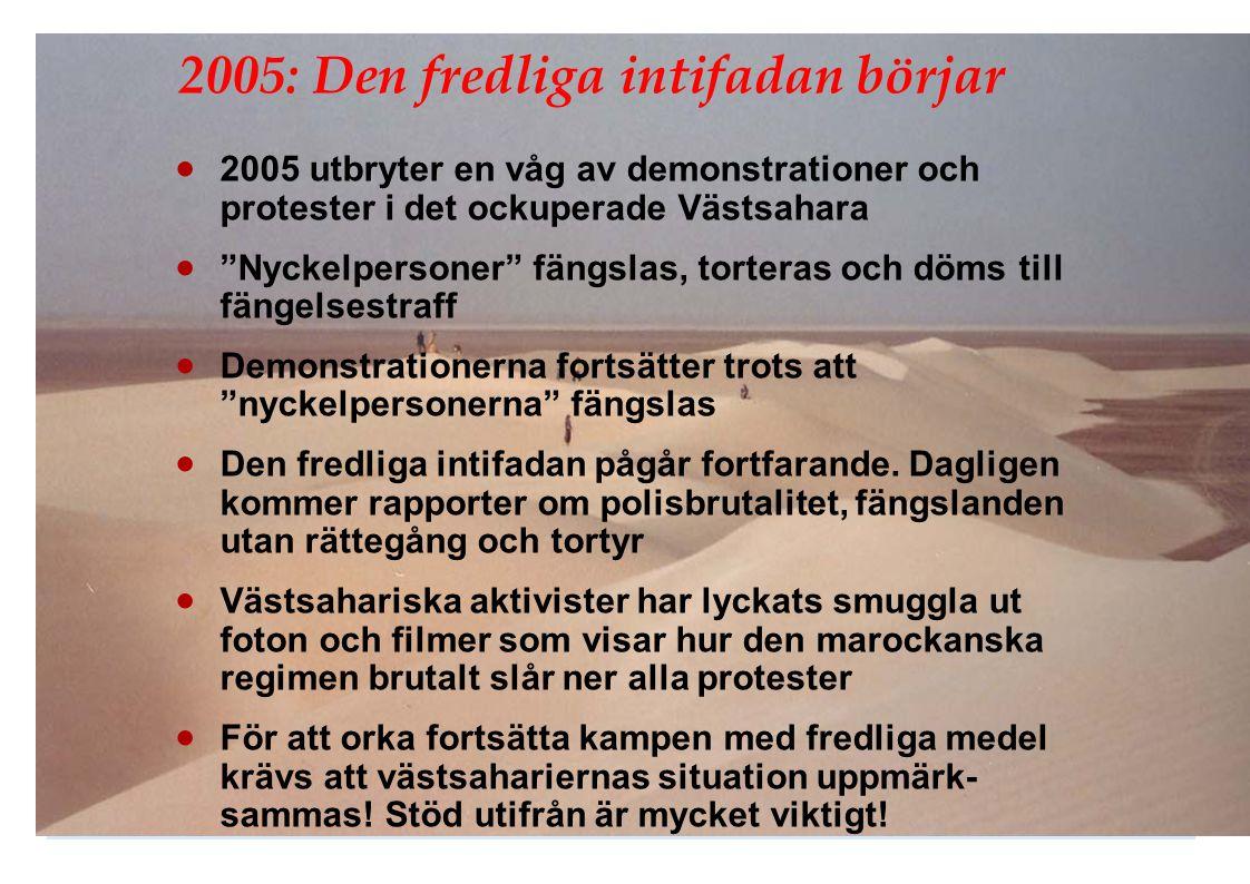 2005: Den fredliga intifadan börjar