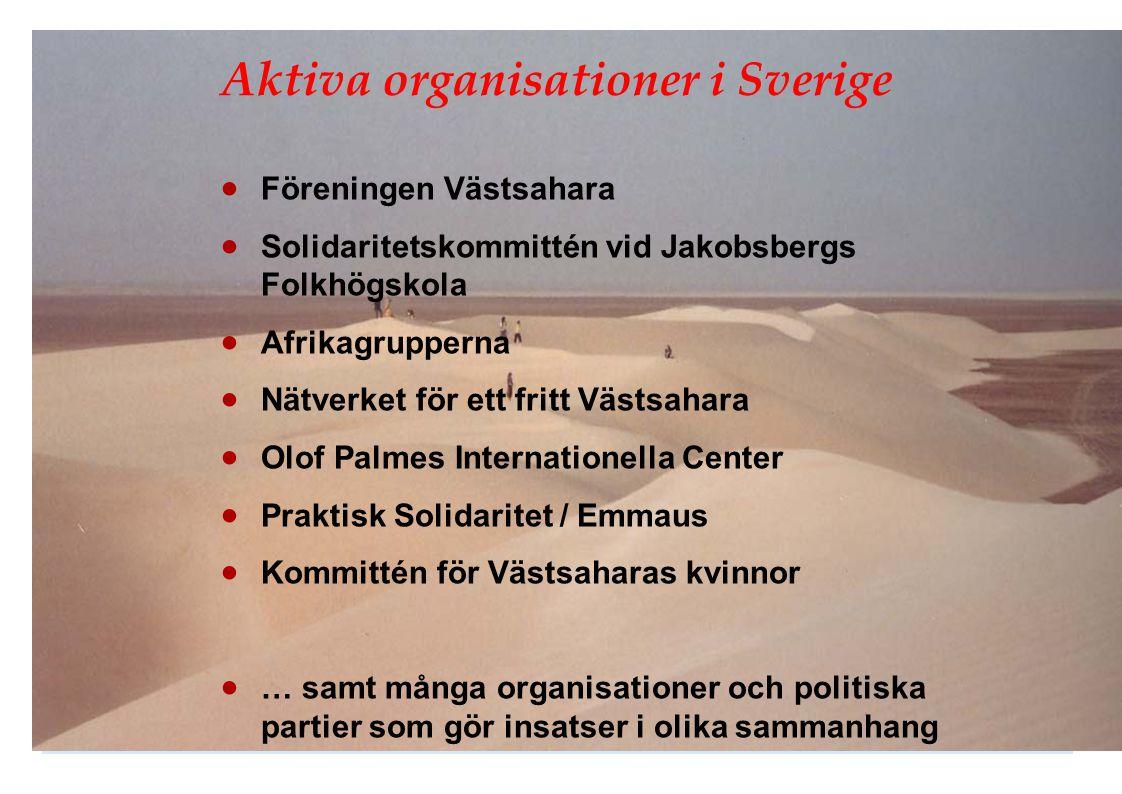 Aktiva organisationer i Sverige