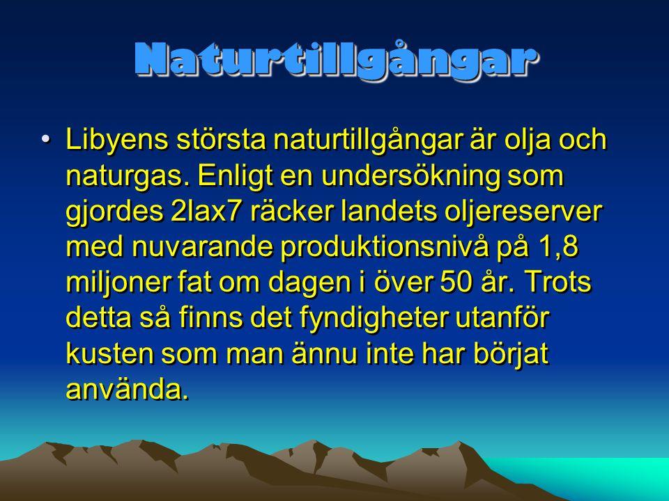 Naturtillgångar
