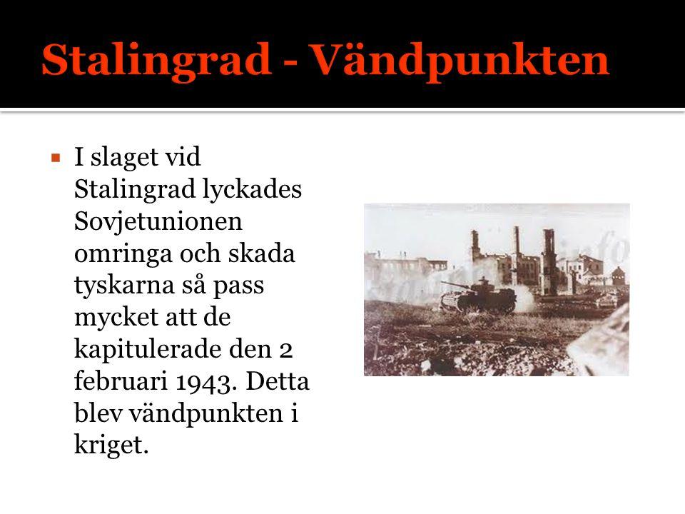 Stalingrad - Vändpunkten