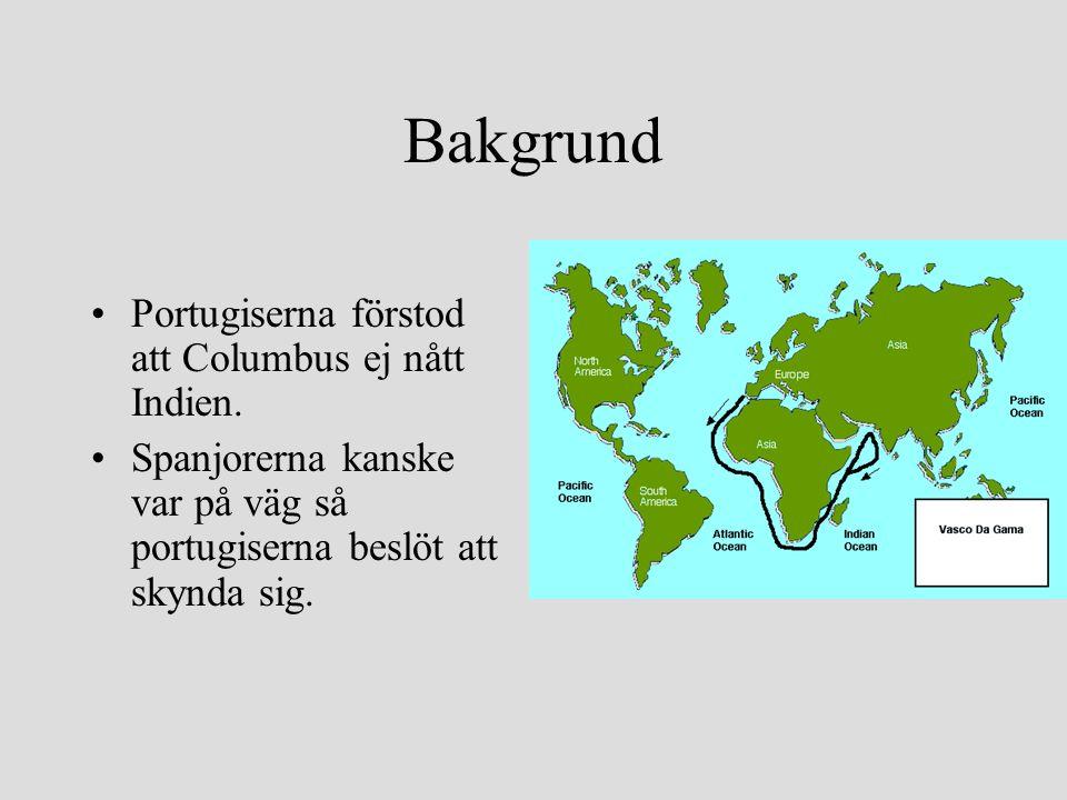 Bakgrund Portugiserna förstod att Columbus ej nått Indien.