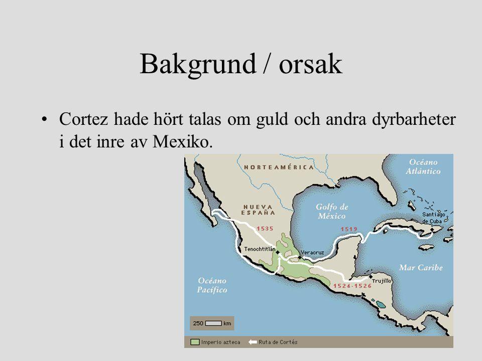 Bakgrund / orsak Cortez hade hört talas om guld och andra dyrbarheter i det inre av Mexiko.