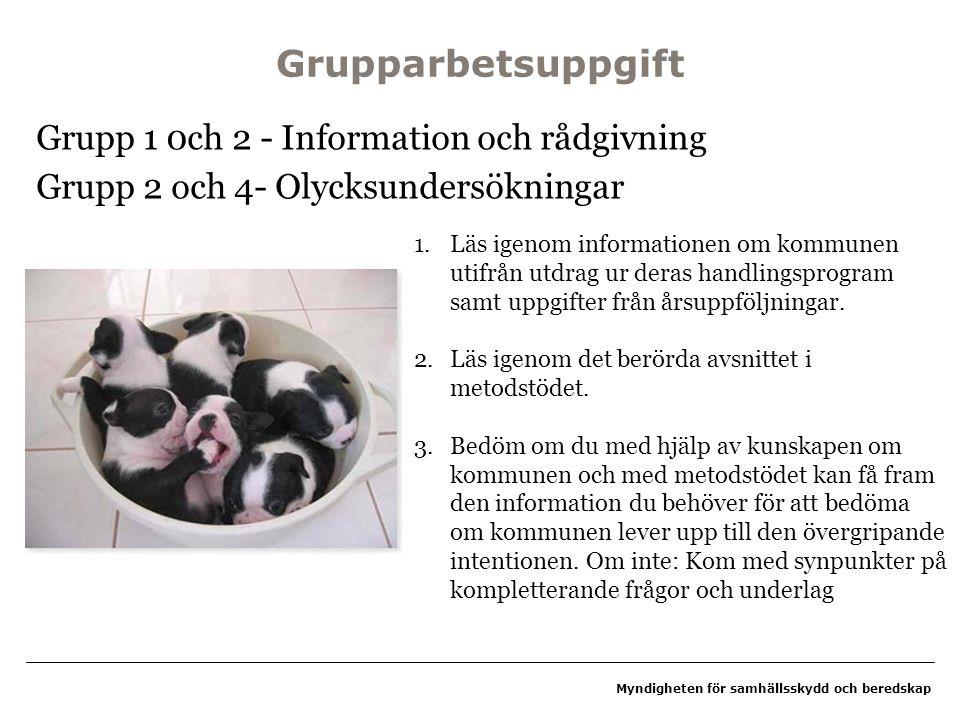 Grupparbetsuppgift Grupp 1 0ch 2 - Information och rådgivning Grupp 2 och 4- Olycksundersökningar