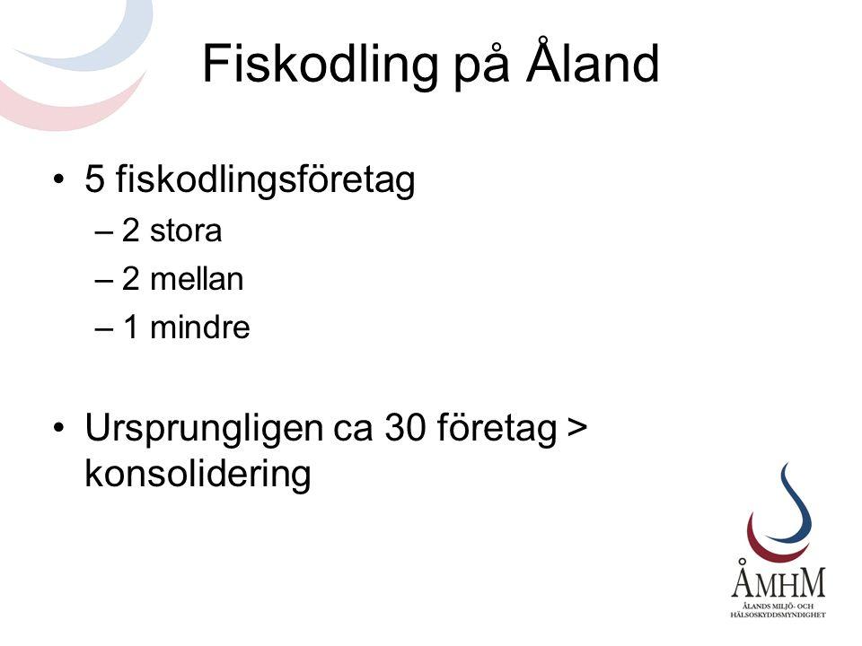 Fiskodling på Åland 5 fiskodlingsföretag