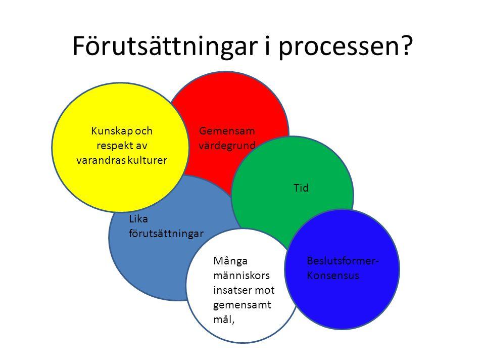 Förutsättningar i processen