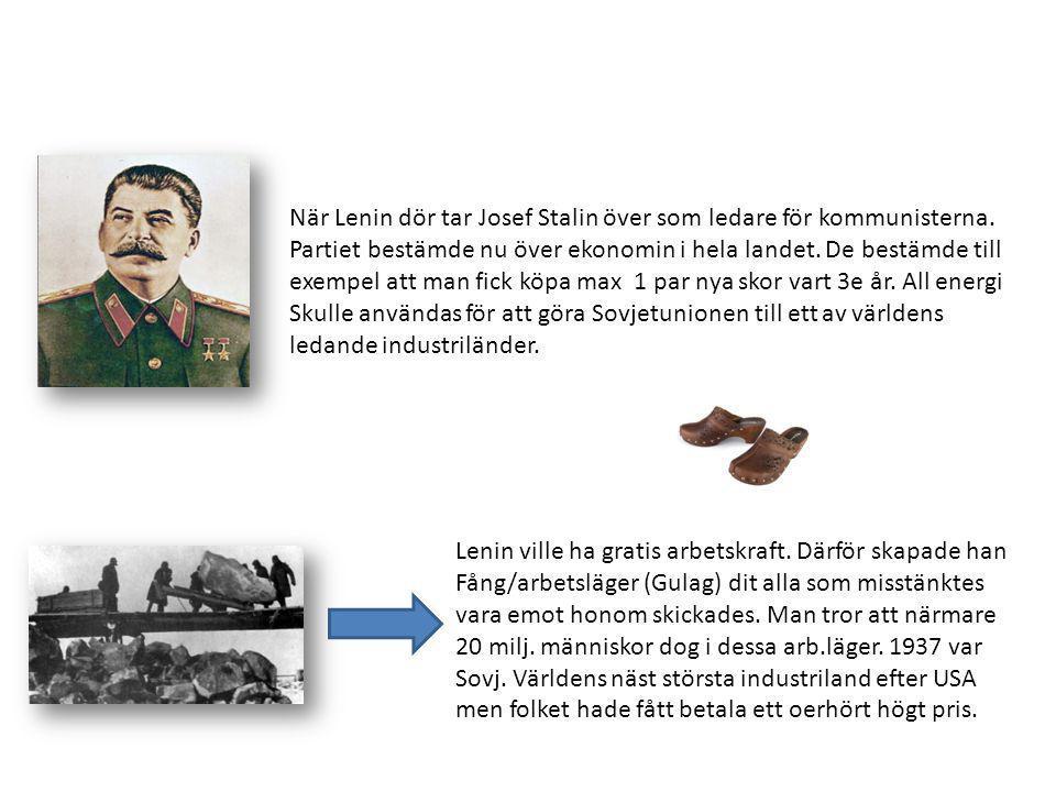 När Lenin dör tar Josef Stalin över som ledare för kommunisterna.