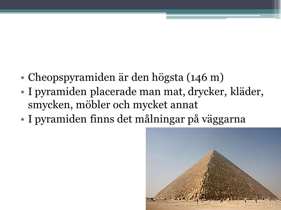Cheopspyramiden är den högsta (146 m)