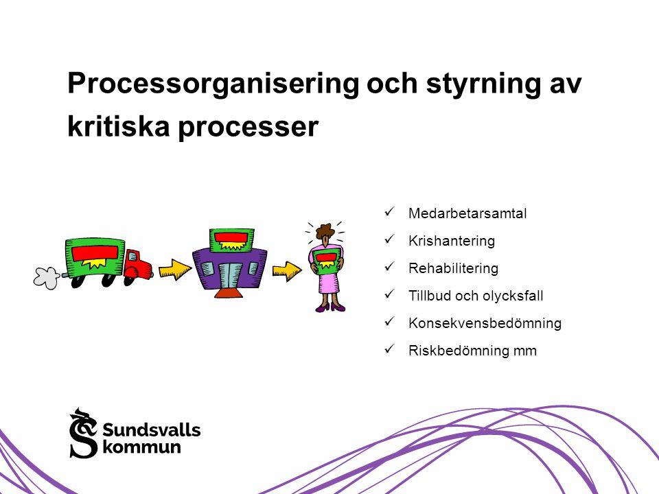 Processorganisering och styrning av kritiska processer