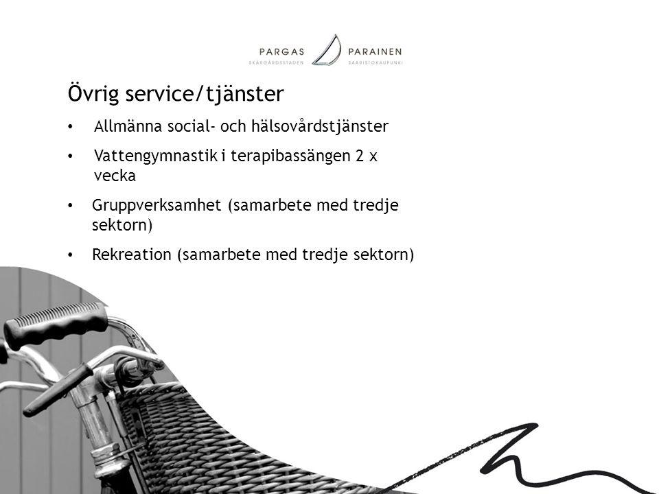 Övrig service/tjänster