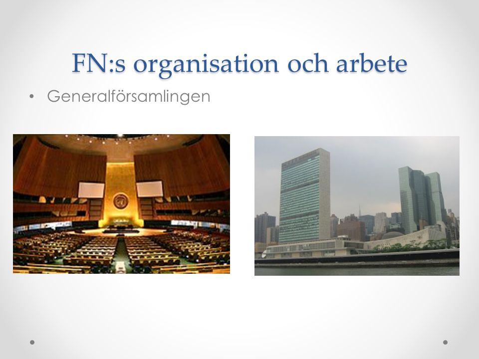 FN:s organisation och arbete