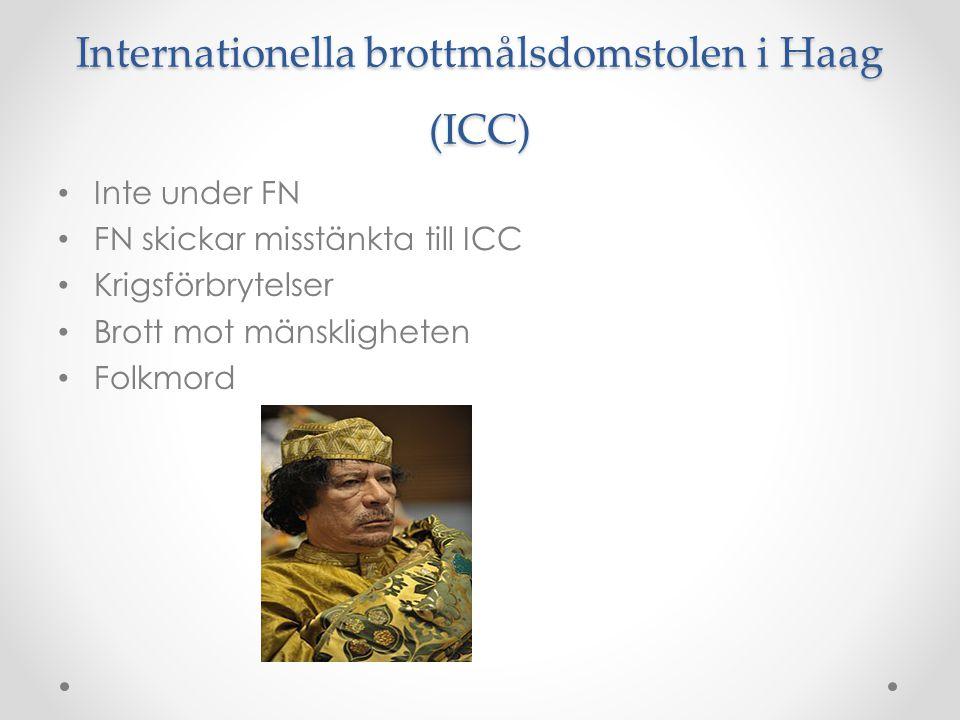 Internationella brottmålsdomstolen i Haag (ICC)