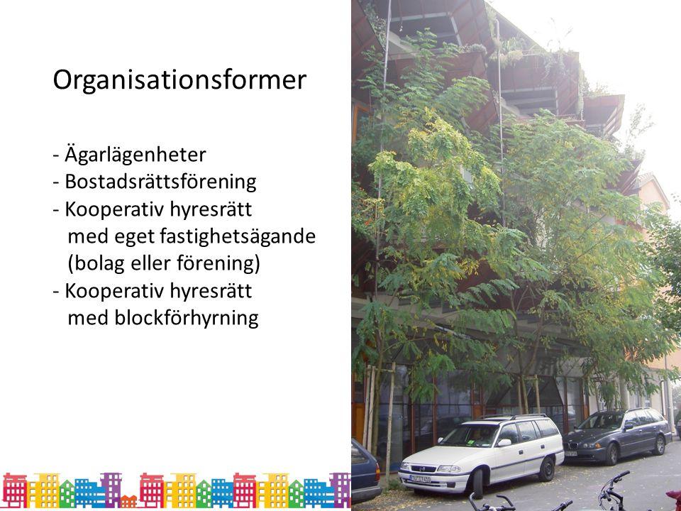 Organisationsformer - Bostadsrättsförening - Kooperativ hyresrätt