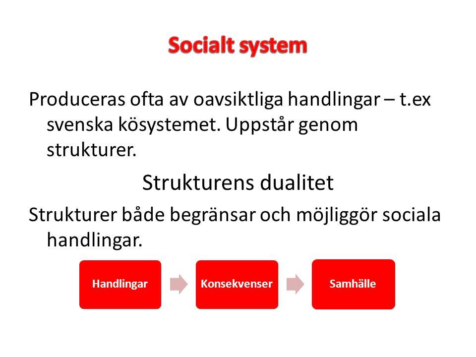 Socialt system Strukturens dualitet