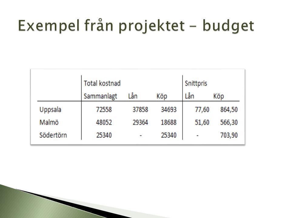 Exempel från projektet - budget