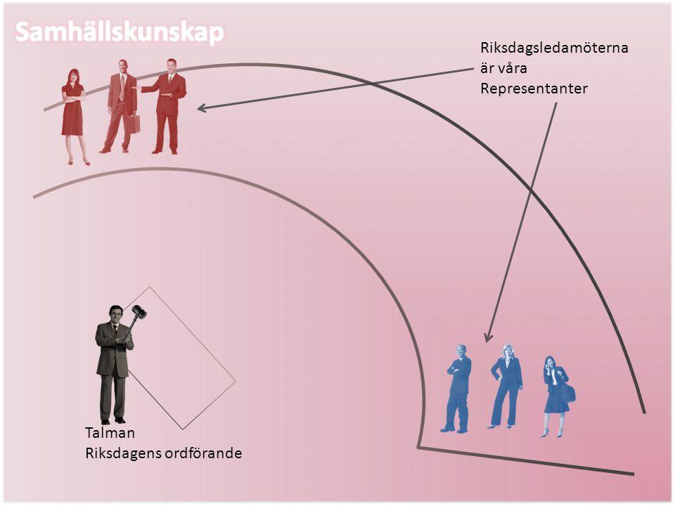 Riksdagsledamöterna är våra Representanter
