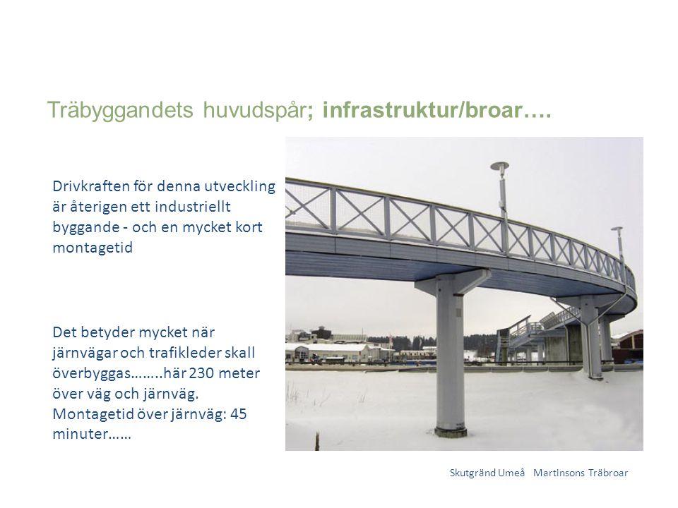 Träbyggandets huvudspår; infrastruktur/broar….