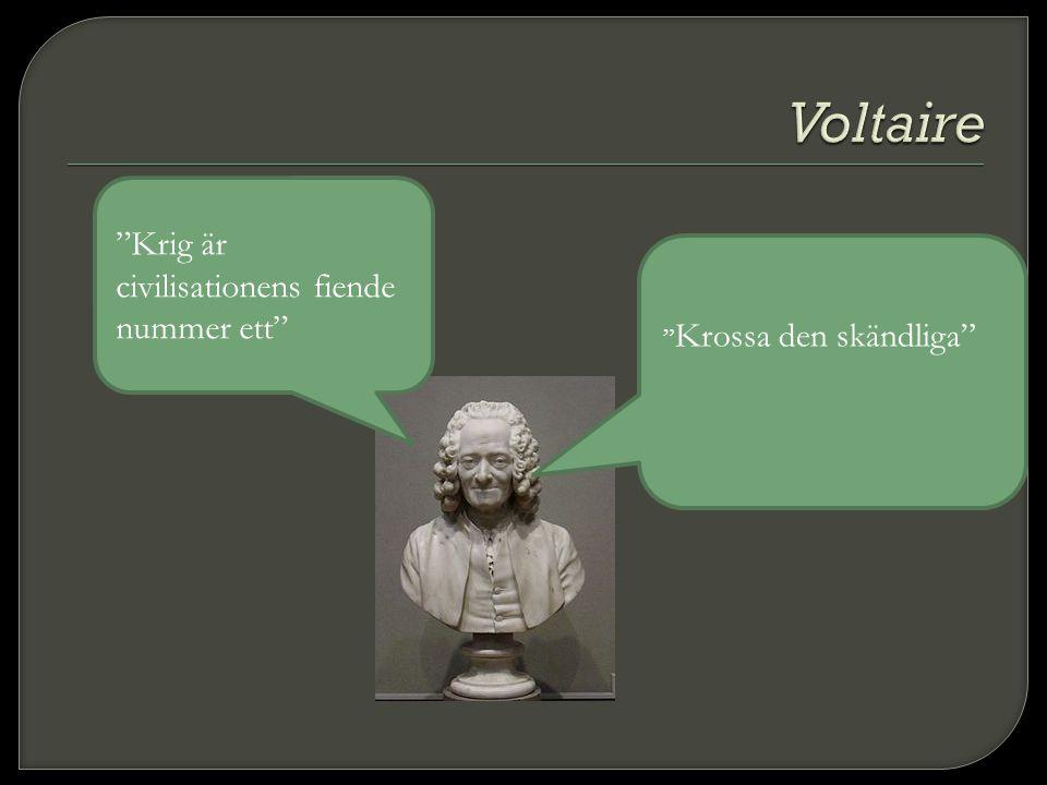 Voltaire Krig är civilisationens fiende nummer ett