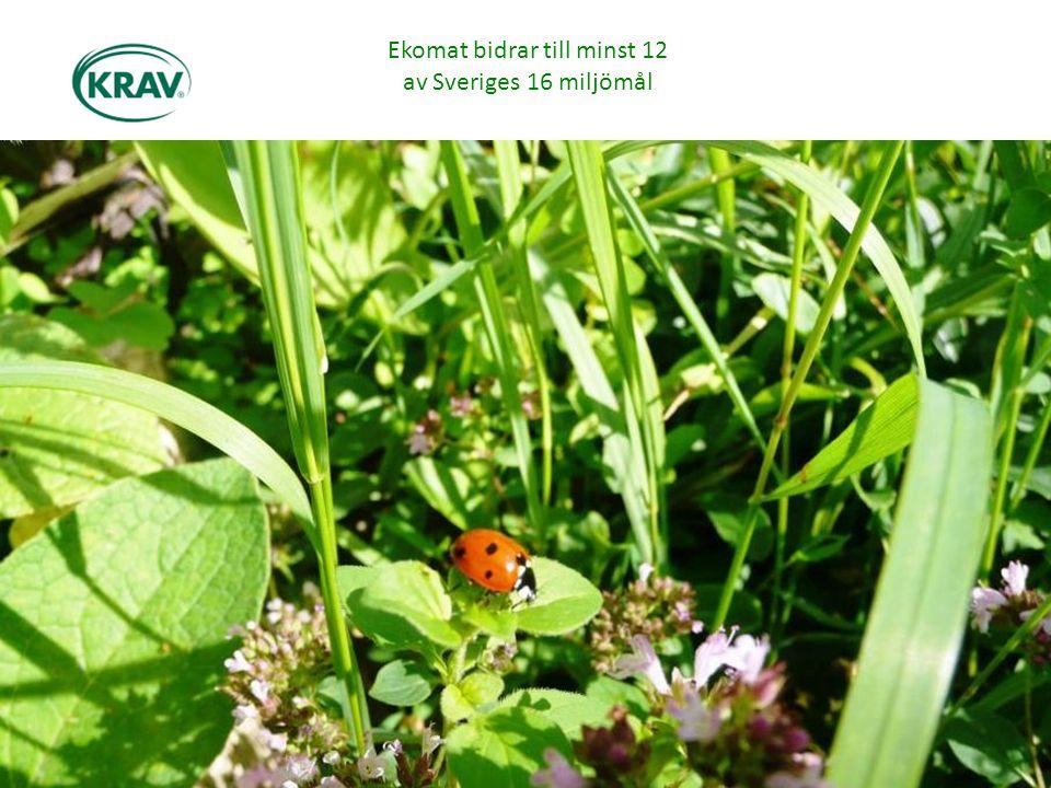 Ekomat bidrar till minst 12