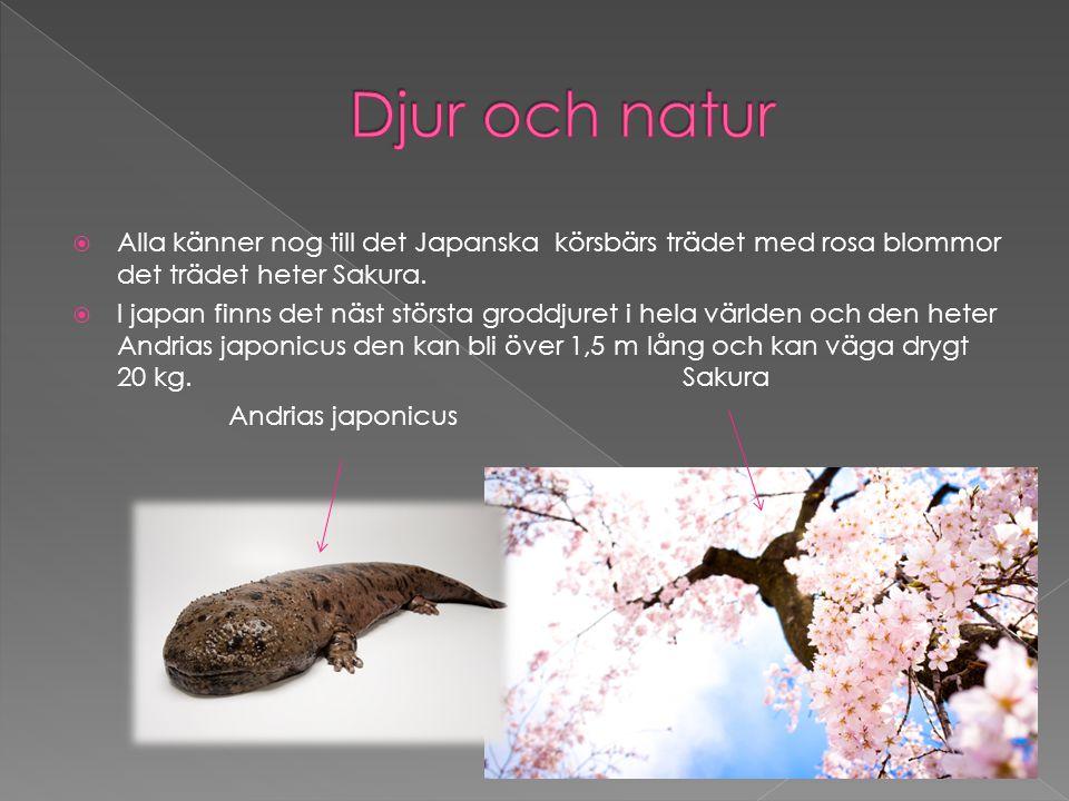 Djur och natur Alla känner nog till det Japanska körsbärs trädet med rosa blommor det trädet heter Sakura.