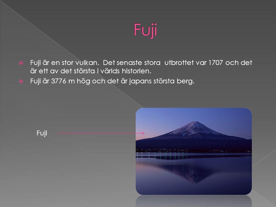 Fuji Fuji är en stor vulkan. Det senaste stora utbrottet var 1707 och det är ett av det största i världs historien.