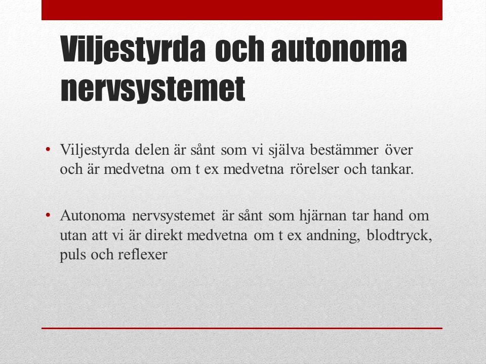 Viljestyrda och autonoma nervsystemet