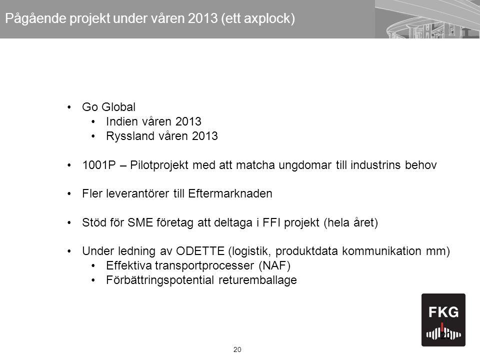 Pågående projekt under våren 2013 (ett axplock)