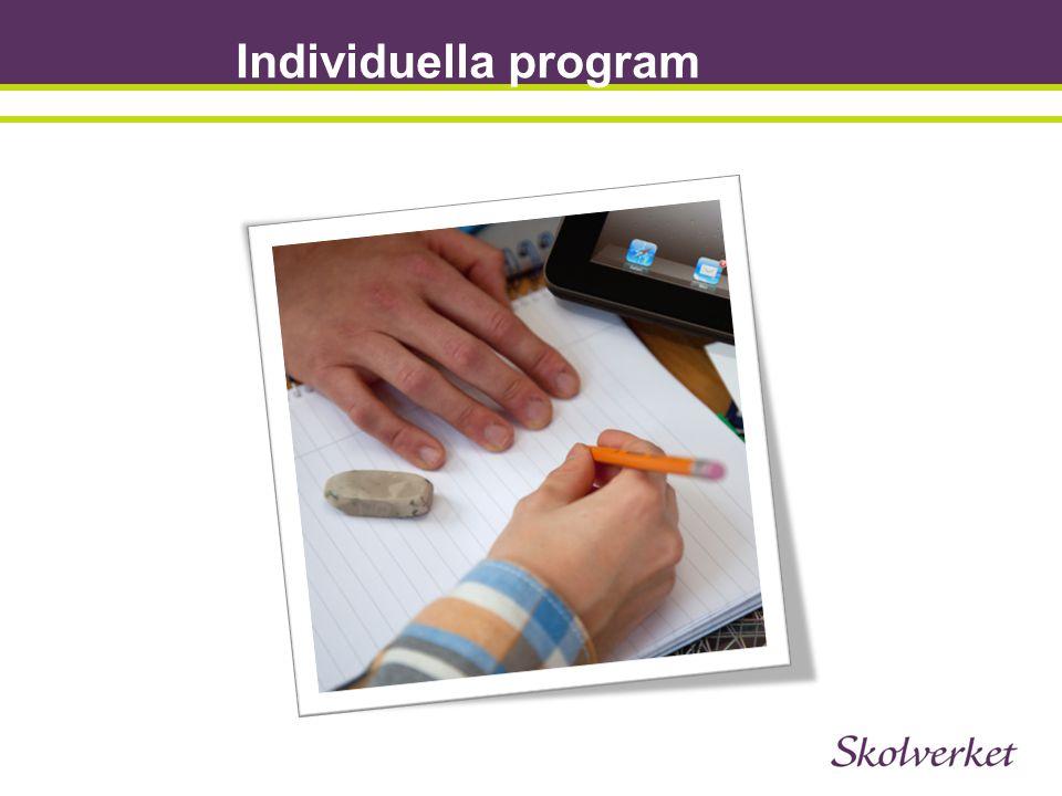 Individuella program