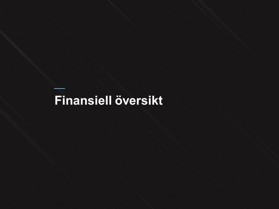 Finansiell översikt
