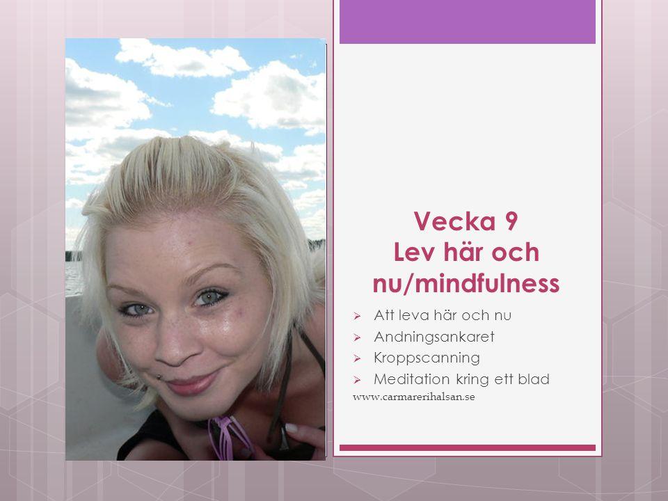 Vecka 9 Lev här och nu/mindfulness