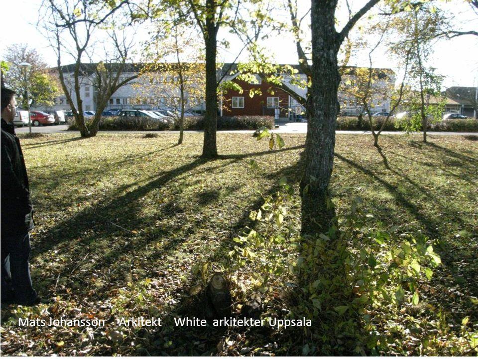 Mats Johansson Arkitekt White arkitekter Uppsala