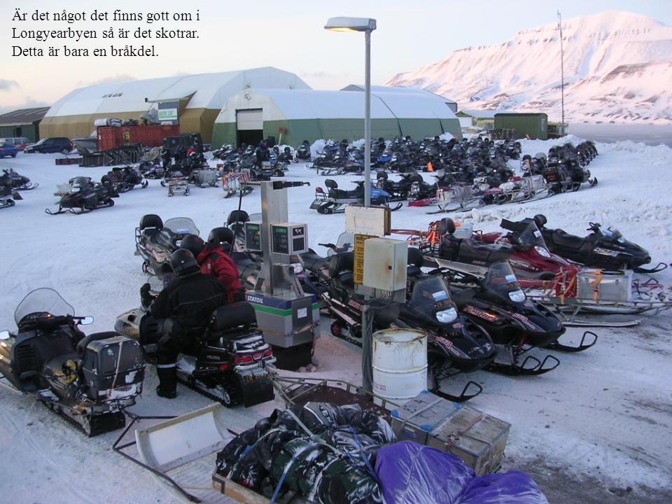 Är det något det finns gott om i Longyearbyen så är det skotrar