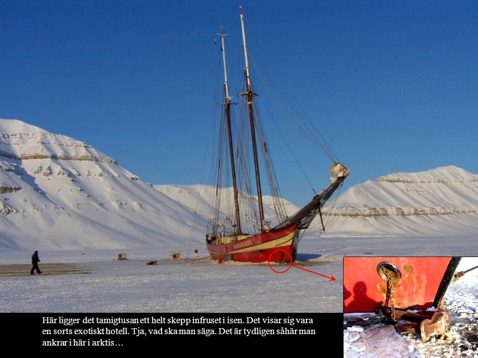 Här ligger det tamigtusan ett helt skepp infruset i isen