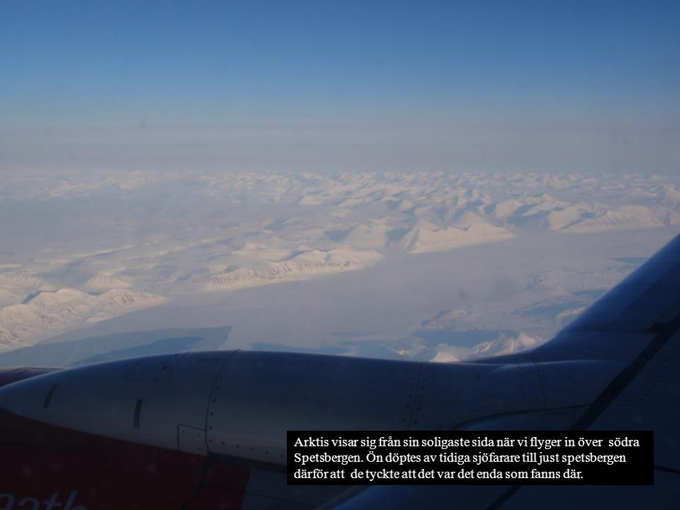 Arktis visar sig från sin soligaste sida när vi flyger in över södra Spetsbergen.