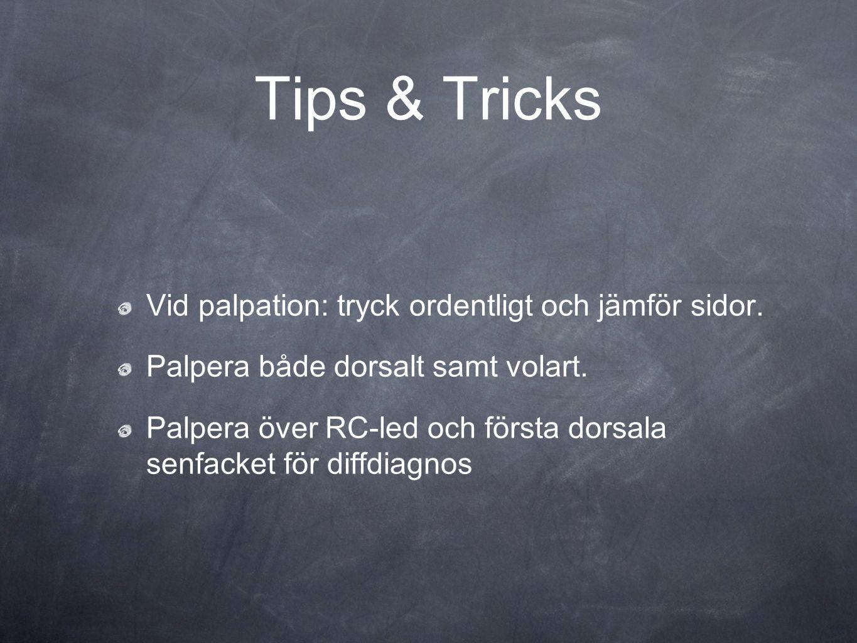 Tips & Tricks Vid palpation: tryck ordentligt och jämför sidor.