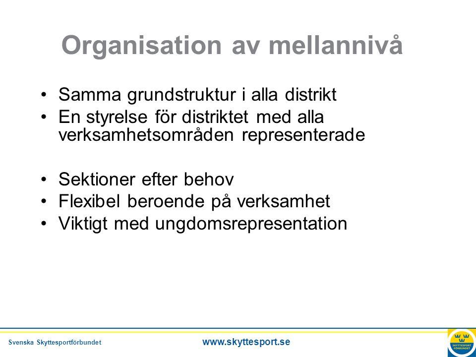 Organisation av mellannivå